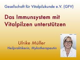 Webinar: Das Immunsystem mit Vitalpilzen unterstützen